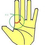 ソロモン線(ソロモン環)が2重にある手相