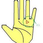 幸運の三角紋(トライアングル)