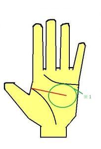 頭脳線が短い手相の性格