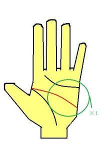 頭脳線が長い手相の性格