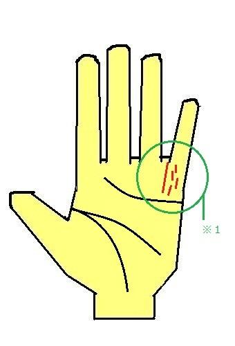 太陽線が薬指側に出る手相