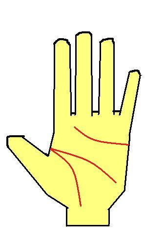 手相占い 右手 左手どちらの手相を観るの?