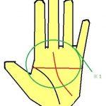 ますかけ線の手相 意味