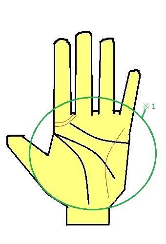 霊感の手相 2重ソロモン線 直感線