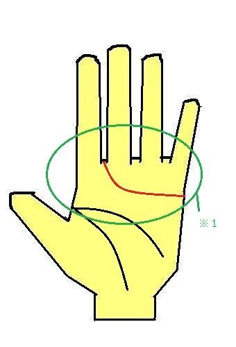 手相の見方 感情線が人差し指と中指の間に伸びる手相 人間関係