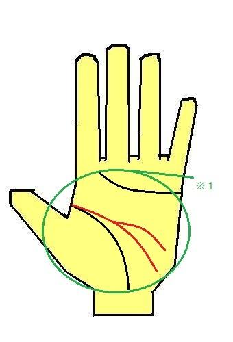 頭脳線が下に伸びて二股の手相 男性