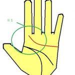 感情線が人差し指に伸びる人の子育て