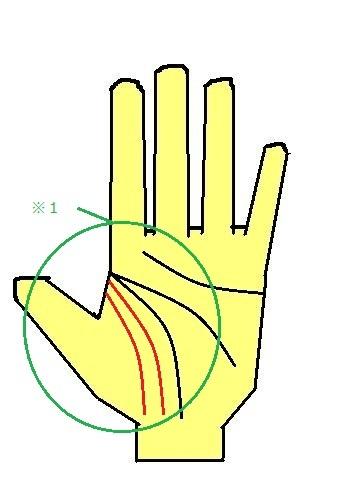 3重生命線 アンチエイジング 生命力のある手相