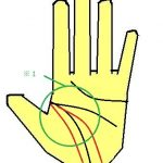 3重生命線の手相(アンチエイジング効果)