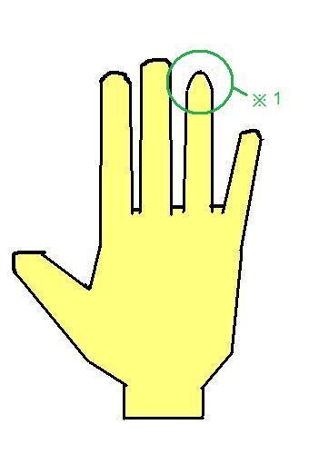 先がとがっている指~尖頭型の指~