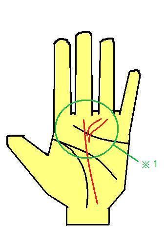 太陽線が運命線の近くから出る手相~運命線に接してなくても大吉相~
