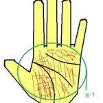 手相の線が本当に細かい手相~思考と行動のバランスをチェック~