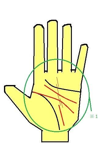 2重頭脳線と運命線