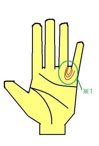 ループ 薬指と小指の間に出るループ~太陽線や財運線すらも押しのける?~
