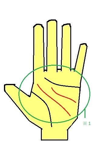 2重頭脳線の手相(離れ頭脳線が2本)