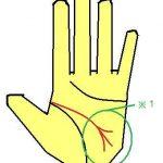 頭脳線が3又になる手相 柔軟に大活躍できる手相