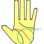 頭脳明晰な頭脳線(キャリアウーマン、ビジネスマンに最適手相)