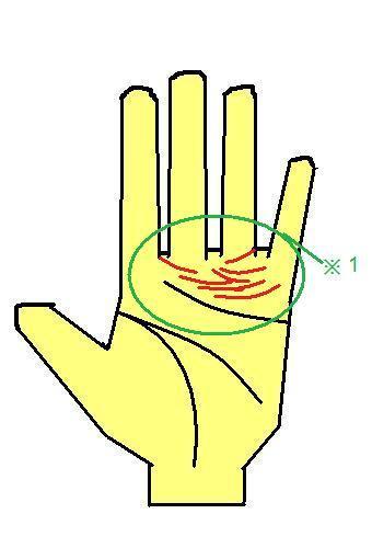 霊能者に多いタイプの手相~感情線の上に線が無数に出る~