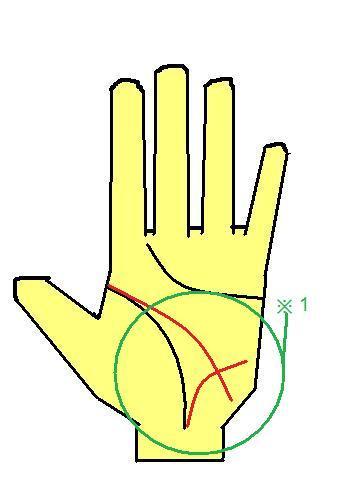 ビア・ラシビア線と頭脳線が下に向く手相
