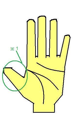 親指が大きな手相