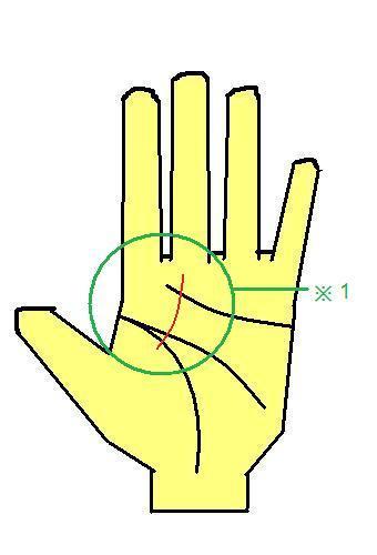 身内開運線~やや生命線の内側から出る開運線の手相~