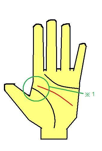 KY線(離れ頭脳線)の手相