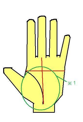 ますかけ線に運命線がまっすぐ立つ手相