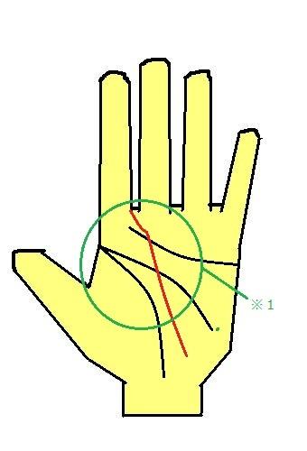 運命線が人差し指や中指の間に入る手相~大きな夢を実現できる手相~