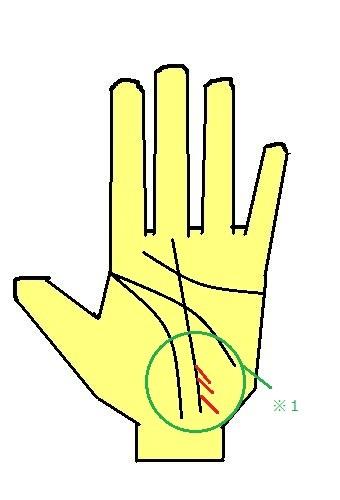 細かい影響線が多数刻まれる手相~人から影響されやすい手相~
