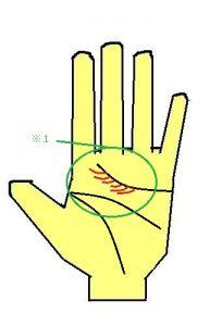 優しさの手相 感情線に細かい支線が出る