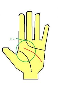 頭脳線,内側,手相