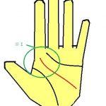 KY線が人差し指下から出る手相 アネゴ肌