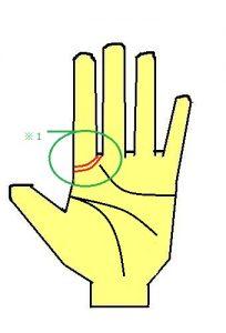 2重ソロモン線は霊感の強い手相
