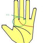 感情線が人差し指と中指に入る優しい手相