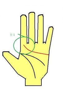 感情線が人差し指に伸びる手相はまじめ度が高い