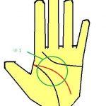 頭脳線が丸みのある曲線になる手相