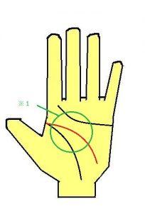 頭脳線が曲線の人は、周りの人への配慮が強い傾向がある
