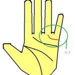 結婚線が薬指に伸びる手相は、素晴らしい相手に恵まれやすい