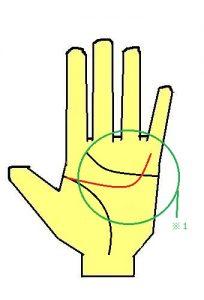 頭脳線が小指に伸びる手相は合理的思考の持ち主