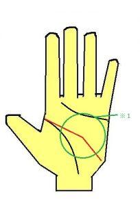 頭脳線が急激に斜めになる手相は、優れた知能を示す