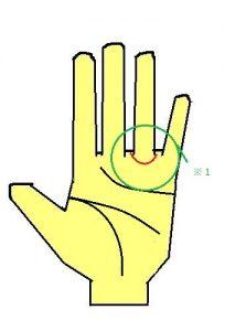 太陽環は薬指下に環が出る手相