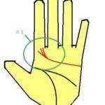 感情線が人差し指下に多く伸びる手相は意志力と正義感が強い