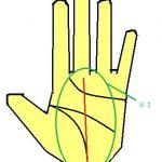 運命線がまっすぐ直線に出る手相は目的外に目を向けることが大切