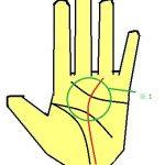 運命線が薬指に伸びる手相は堅実さを持っている