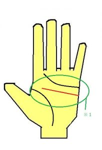 KY線(頭脳線)が直線に出る手相