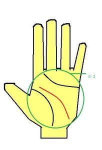 KY線(離れ頭脳線)が下に伸びる手相