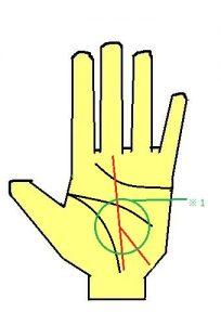 運命線の下部が二股に分かれる手相