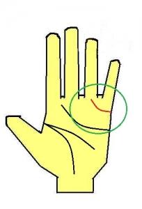 結婚線が上向きに薬指に伸びる手相